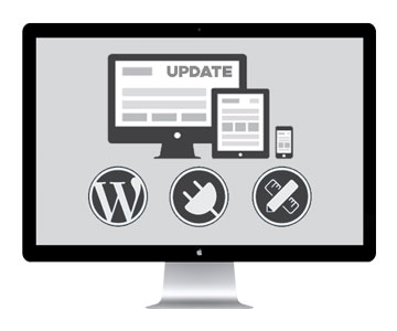 Website Management & Updates